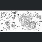 31170-RZP-G03, 31170RZPG03 OEM napinacz paska klinowego Honda Accord 8gen 08-12 R20