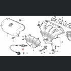36531-PAA-307, 36531PAA307 OEM sonda lambda Honda Accord 6gen 98-02 F18, F20