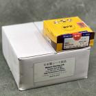 nippon-pr3-817 Nippon tłoki PR3 B16A2 81,75mm